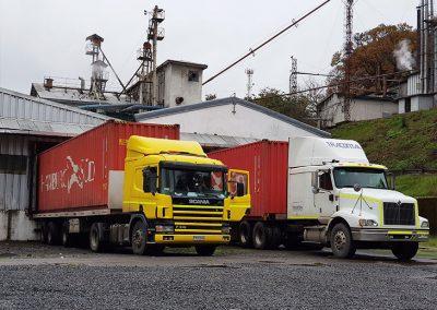 Monteverde_Transporte_cuerpo003